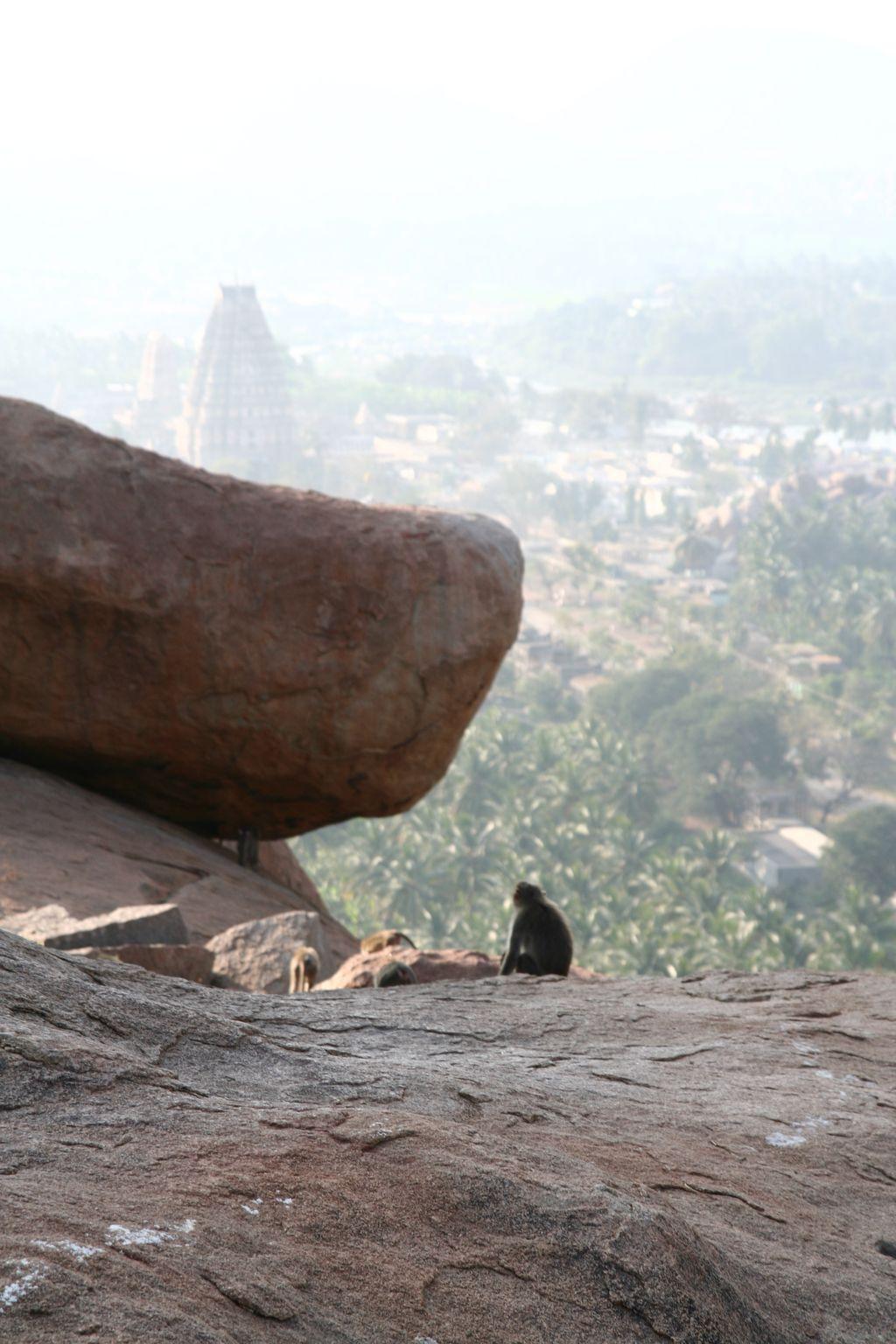 Skály a opice nad Hampi. Vše je na několika kilometrech čtverečních.