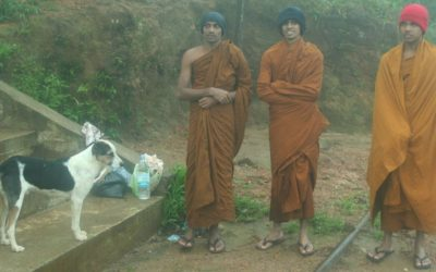 Cestopis Srí Lanka: Hory a výstup na Adam´s Peak