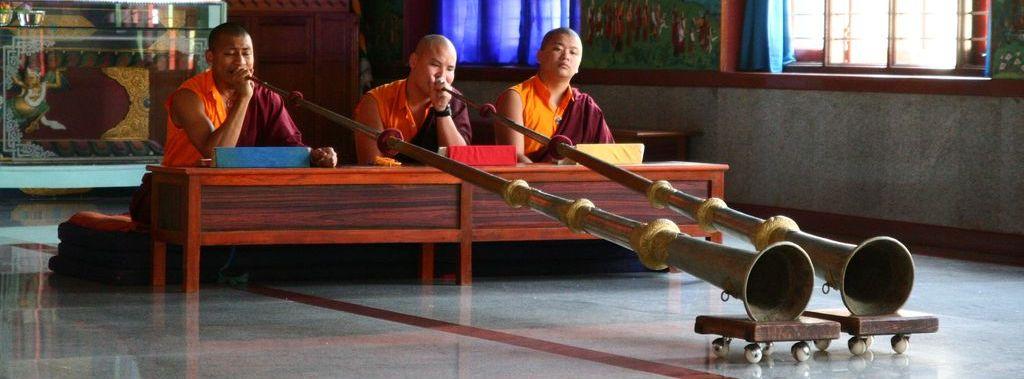 CESTOPIS INDIE ČÁST 3: Jižní Indie ráj buddhismu?
