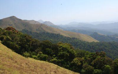 CESTOPIS INDIE ČÁST 2: Kávové plantáže a krásné hory ve státě Karnataka