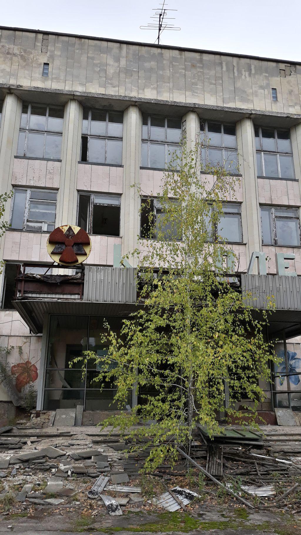 Stačí 30 let a příroda v Černobylu převzala vládu