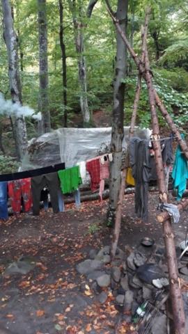 Lesní lidé