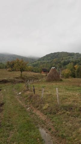 Vesnička Lumshory