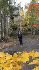 Sídliště je po třiceti letech součástí lesa